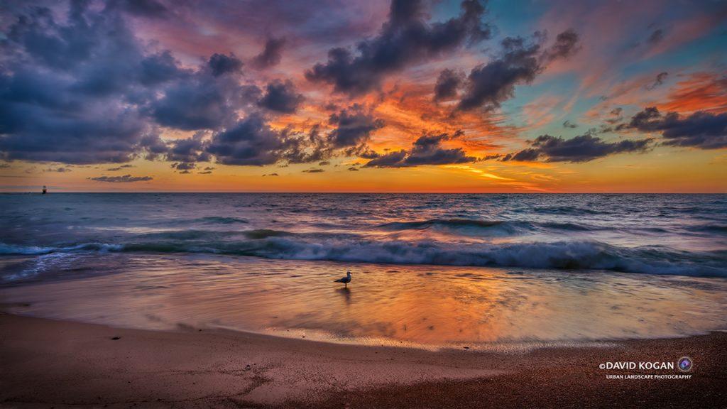 Sunrise Segull Chicago